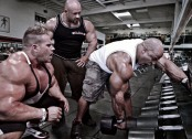 back-to-the-gym-how-to-train