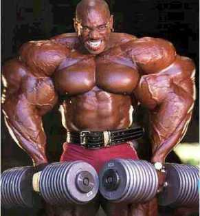 massive muscle bodybuilder steroids meathead golds gym world gym arnold ronnie coleman batista moobs biceps