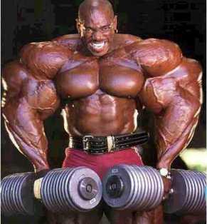 massive muscle bodybuilder steroids meathead golds gym world gym arnold ronnie coleman batista moobs biceps