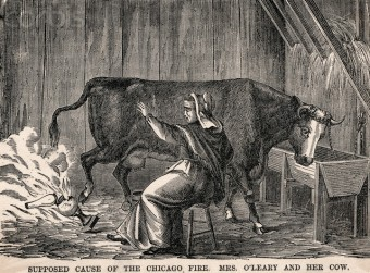Mrs. O'Leary'S Cow Starting Fire